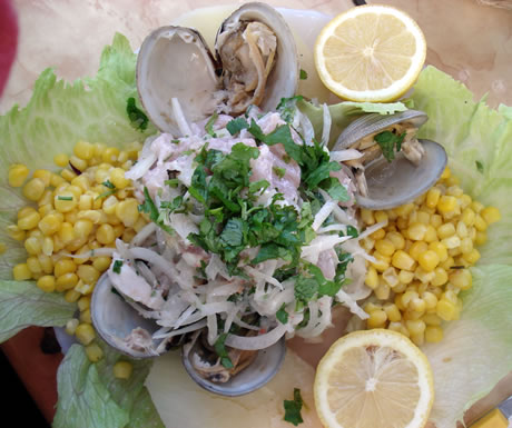 Ceviche is a typical fish dish